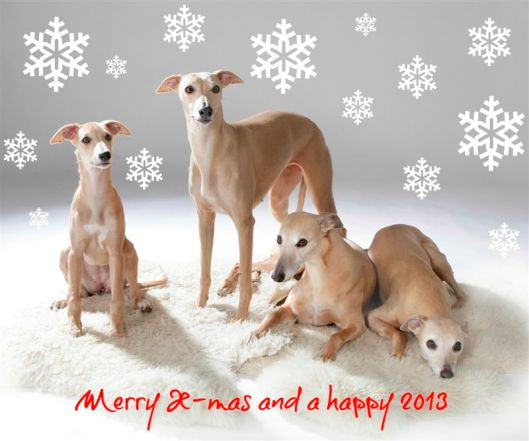 Kerstkaart 2012 verkleind