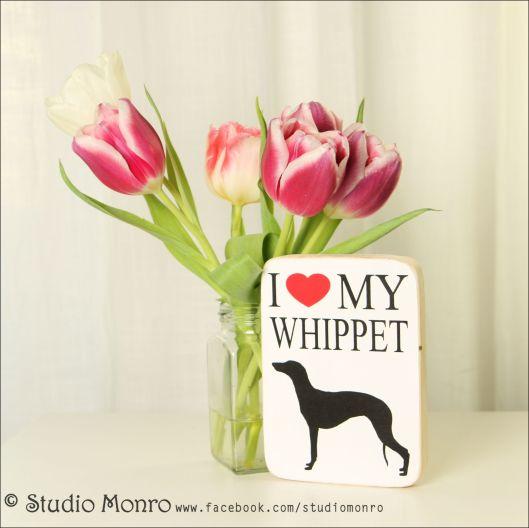 Whippet-wm