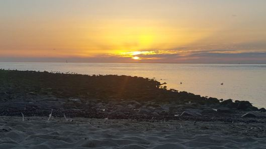 Sunsetdh